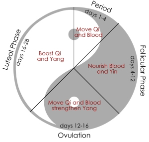 period-cycle1